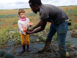 WWOOF(ウーフ)体験記, 海外編④ フランスで農業ボランティアをしたらサバイバル知識が増えた話。